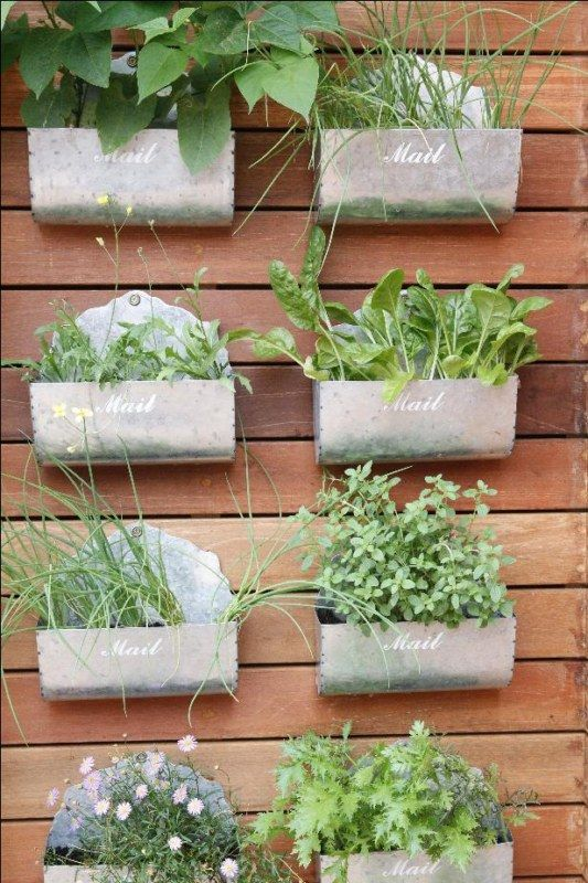 Best 20 Herb Garden Design 2017: Pin By Tiffany Tooley On Diggin In The Dirt