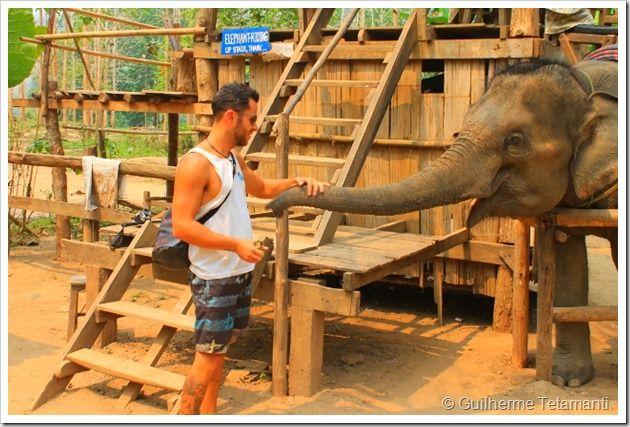Final do passeio com os elefantes - Luang Prabang - Laos
