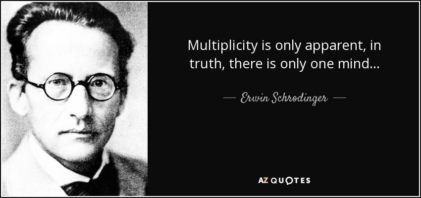 40 Best Erwin Schrodinger Quotes A Z Quotes 25th Quotes Science Quotes Quotes