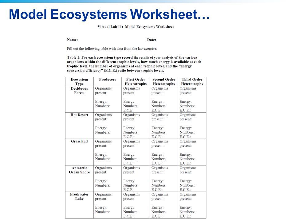 2011 Pearson Education, Inc. Virtual Lab : Modeling Ecosystems AP ...