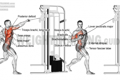 Standing Twisting Cable High Row Exercise Instructions And Video