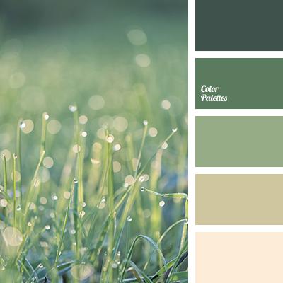 Dusty Green Beige Color Of Greenery Cream Dark Gentle Etc