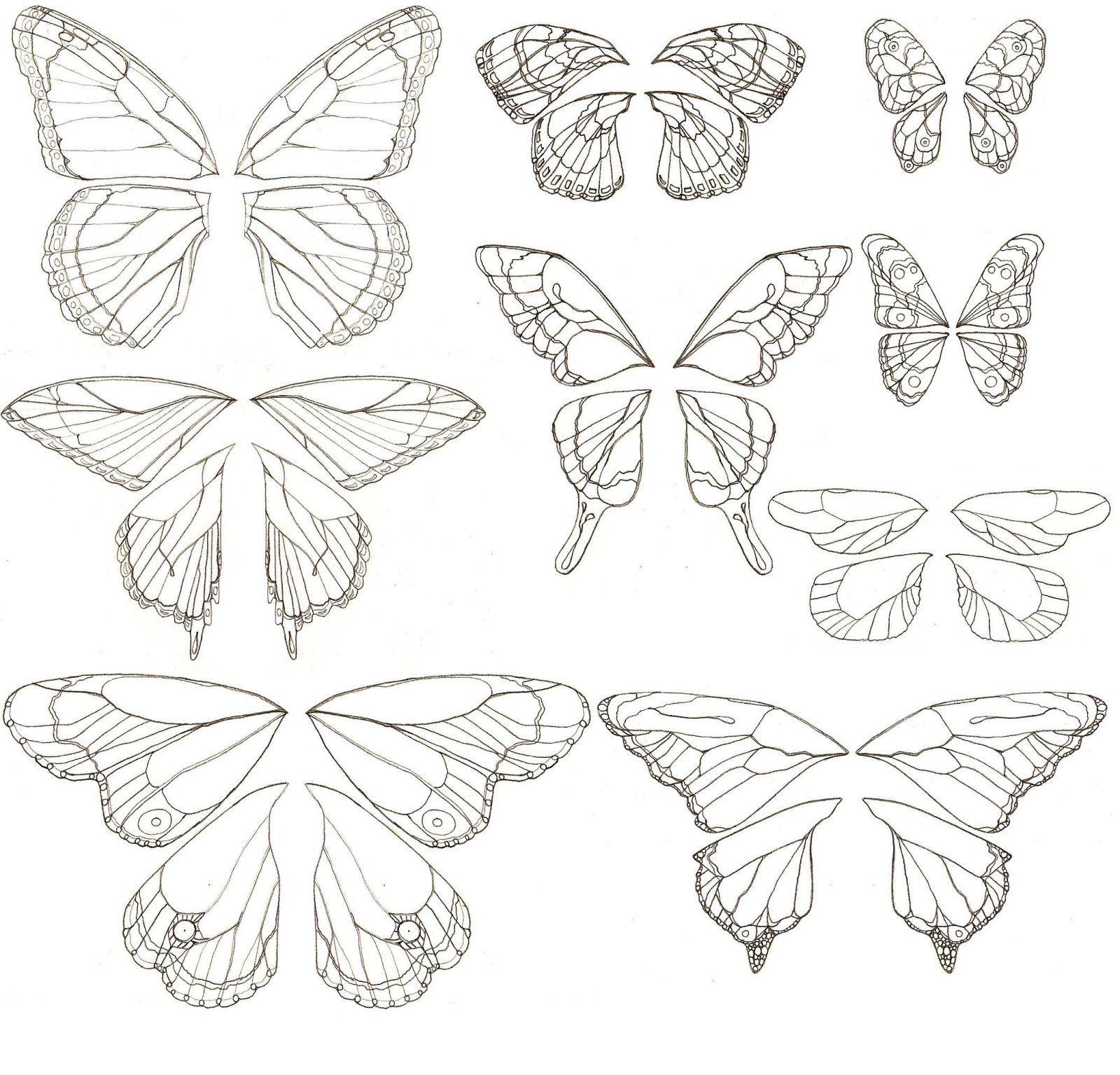 Uncategorized Butterfly Wings Drawing possible sub lesson for one without art background can teach copy of butterfly wings jpg johanna dragonlady jimenez scifi fantasy art
