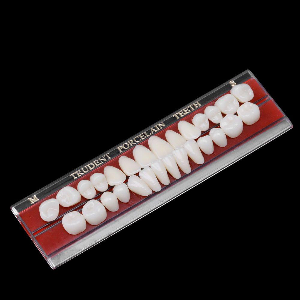Dental Teeth Dentures Material Alloy Pin Porcelain Colors Shade Guide Set