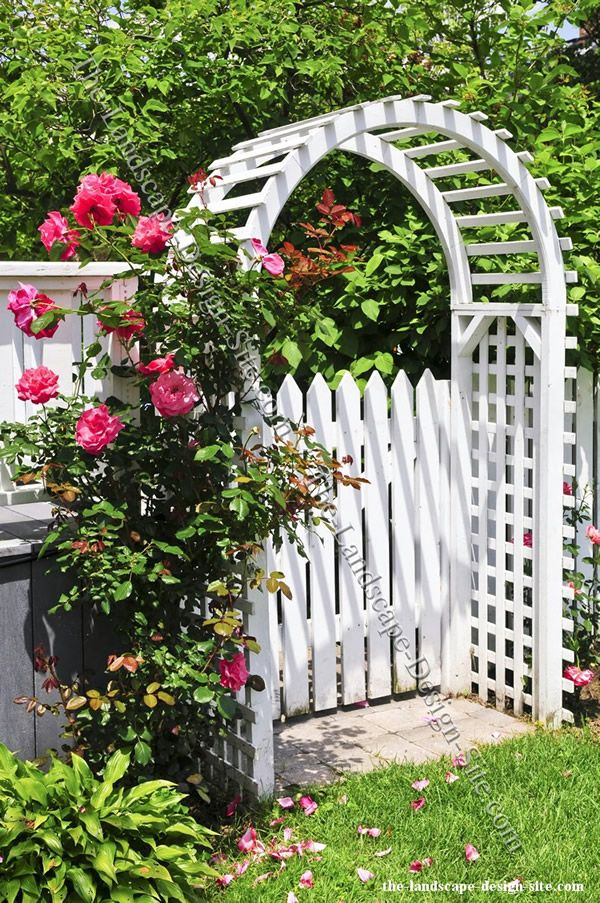 Cottage Garden Design Style White Picket Fence, Gate, Arbor, And The Use Of  Rose Combined Creates A Cottage Garden Style. I Can Imagine Walking Through  That ...