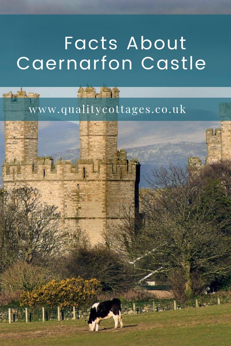 Facts About Caernarfon Castle Castles In Wales Castle Snowdonia National Park