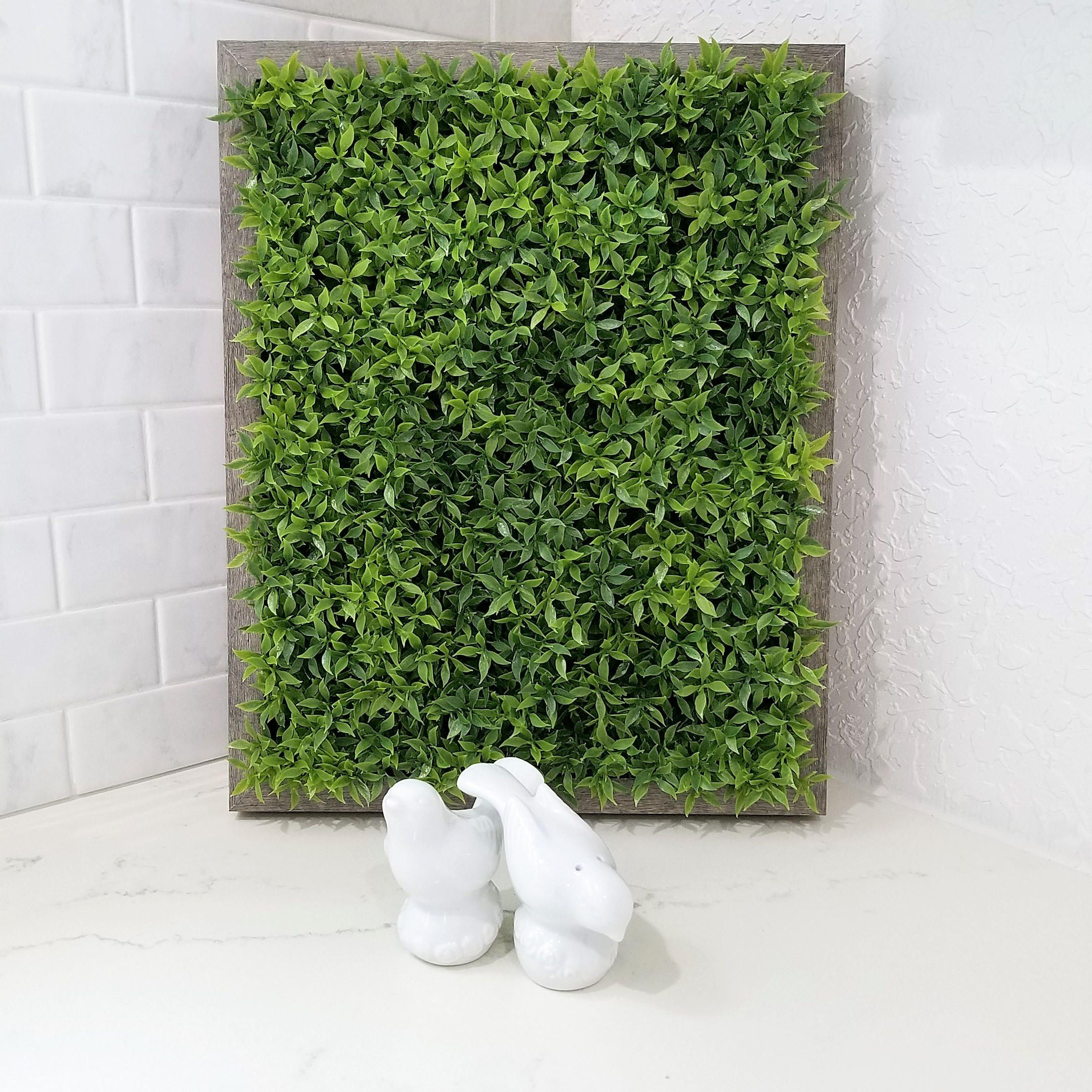 Wall  Plant  Artificial  Plants  Green Wall  living wall