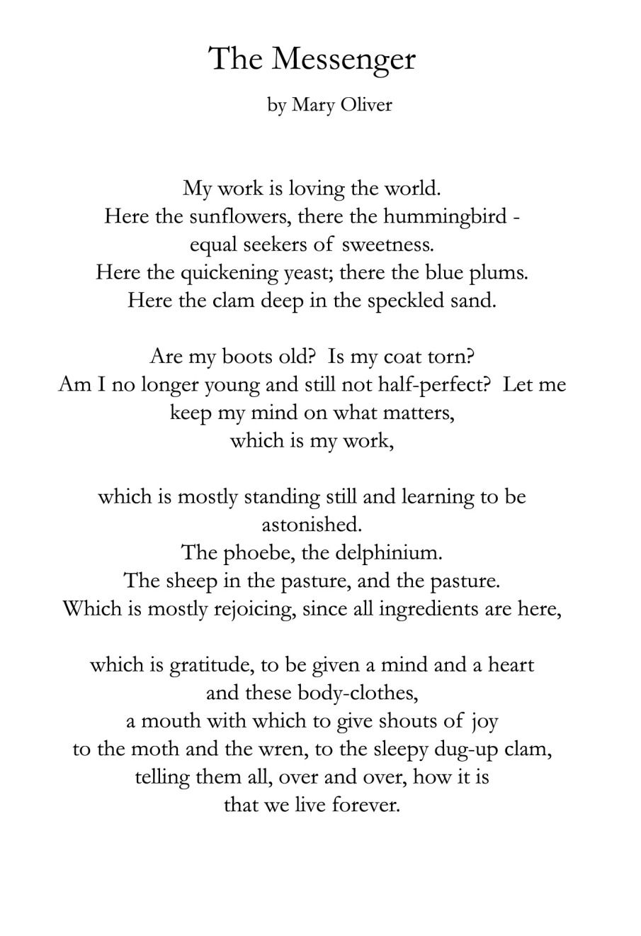 Mary Oliver Love Quotes The Messenger Mary Oliver  Quote Notes  Pinterest  Mary Oliver