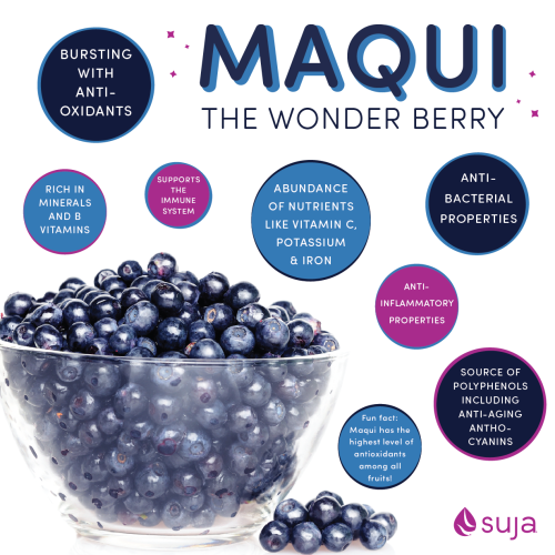 Suja Juice Benefits Of Maqui Berry Addicted To This Juice Suja I