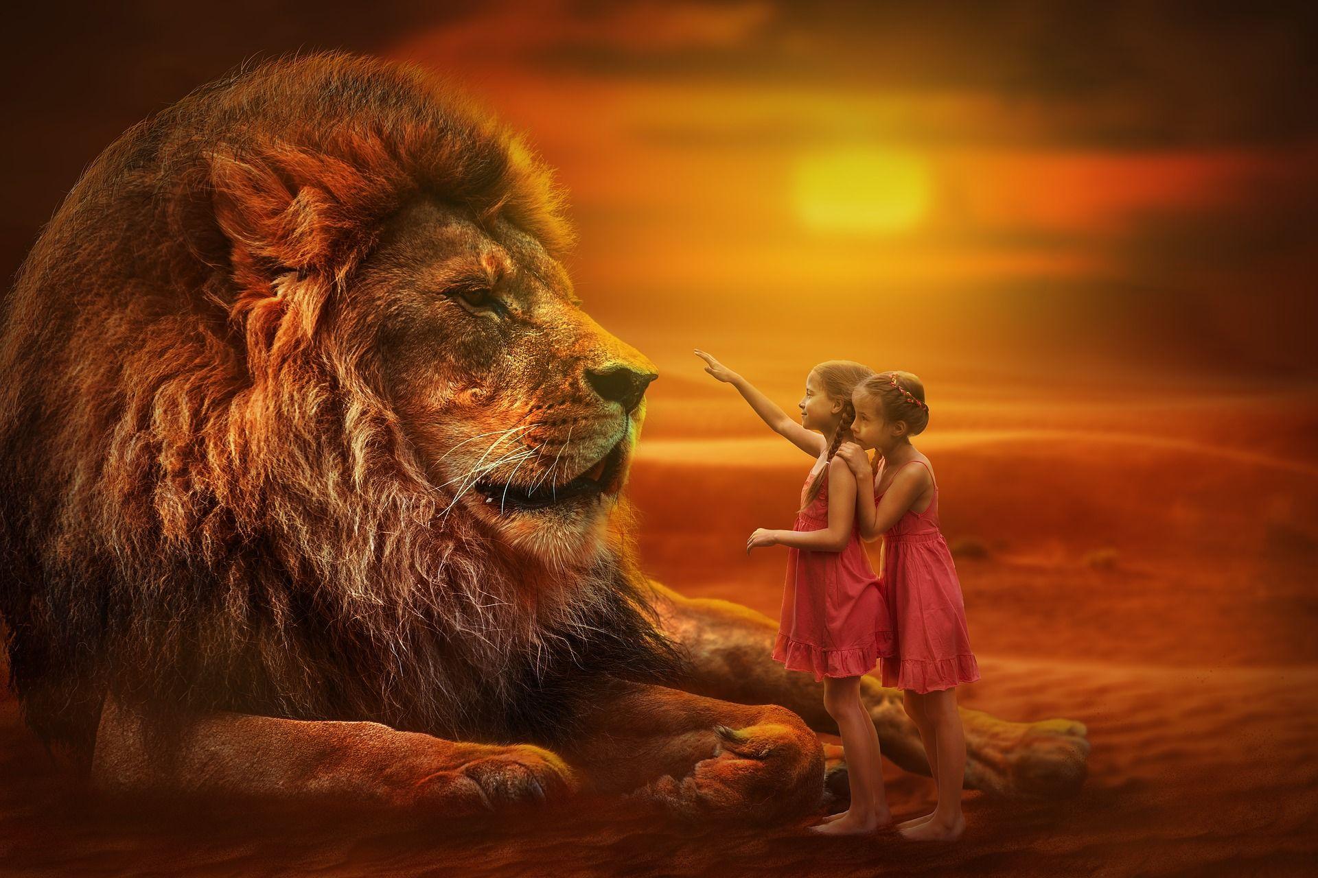 Free Image on Pixabay - Lion, People, Twins, Sunset ...