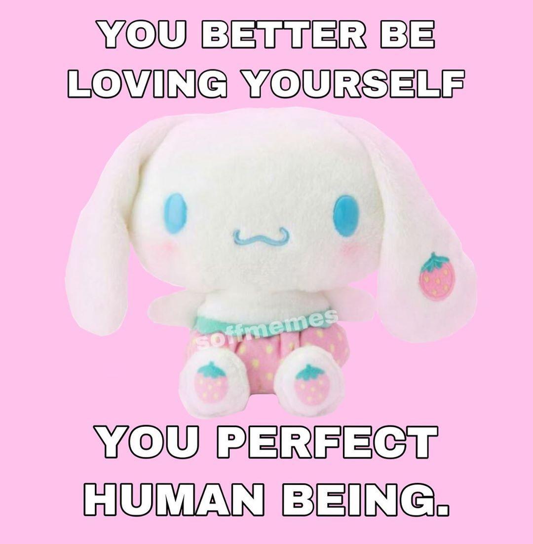 O O On Instagram Meme Soft Softmeme Cute Cinnamoroll Memes Explore Pink S Cute Love Memes Baby Memes Cute Memes