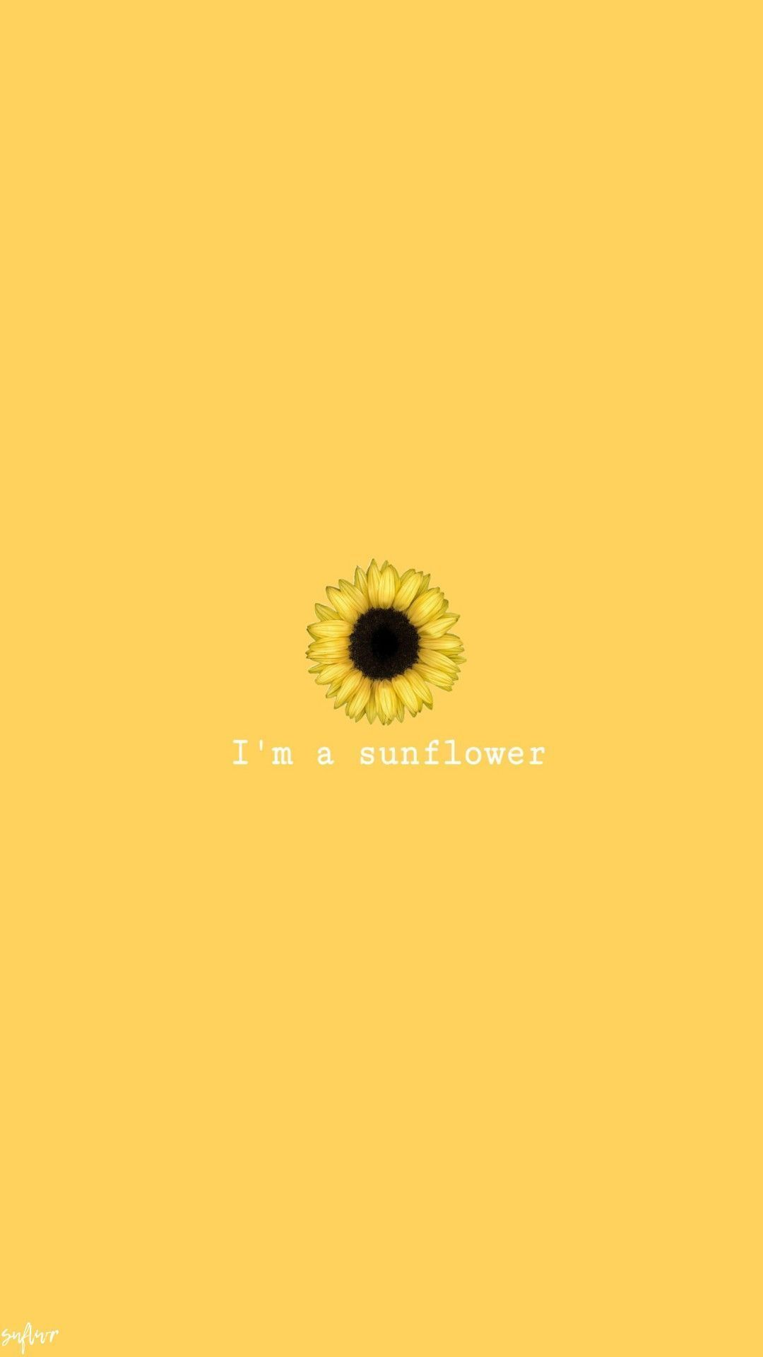 Girasole Yellowastheticwallpaperiphone Sunflowerwallpaper Girasole Sunflower Wallpaper Yellow Wallpaper Sunflower Iphone Wallpaper