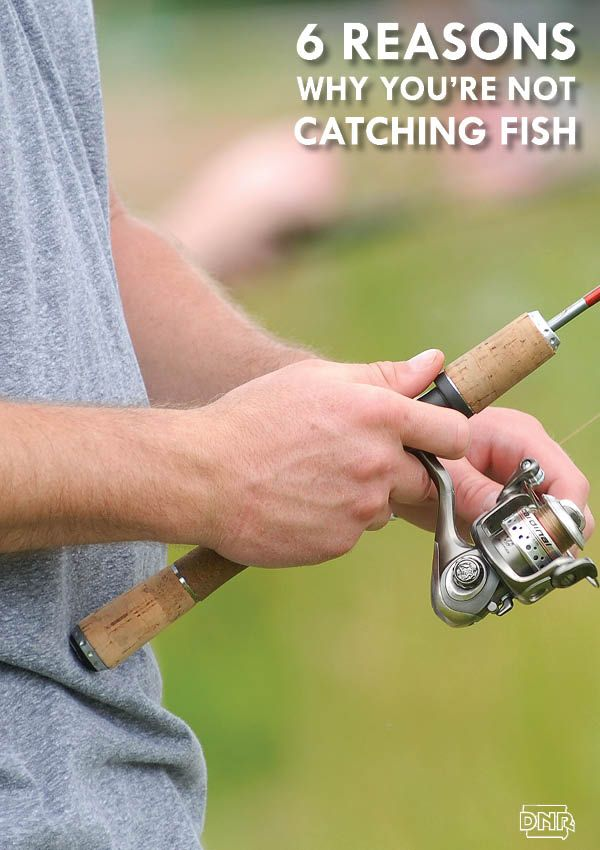 6 reasons why you 39 re not catching fish iowa dnr iowa for Public fishing near me