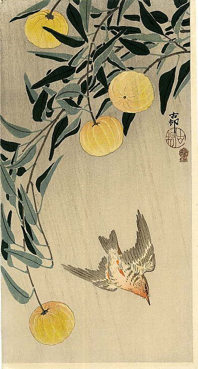 """Cuckoo - Early Summer's Rain"" (or?) ""Wren and Yellow Fruit"" by Ohara Koson"