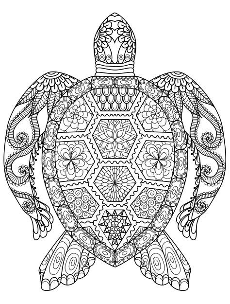 sea turtle coloring page for adults for free download   coloring ...