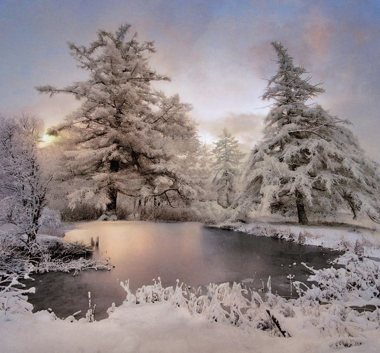 Зима пришла картинки красивые, корпоративная юбилейная