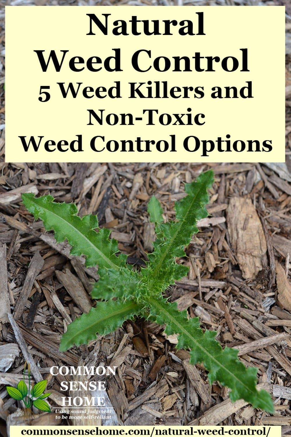 Pin on Weed killer