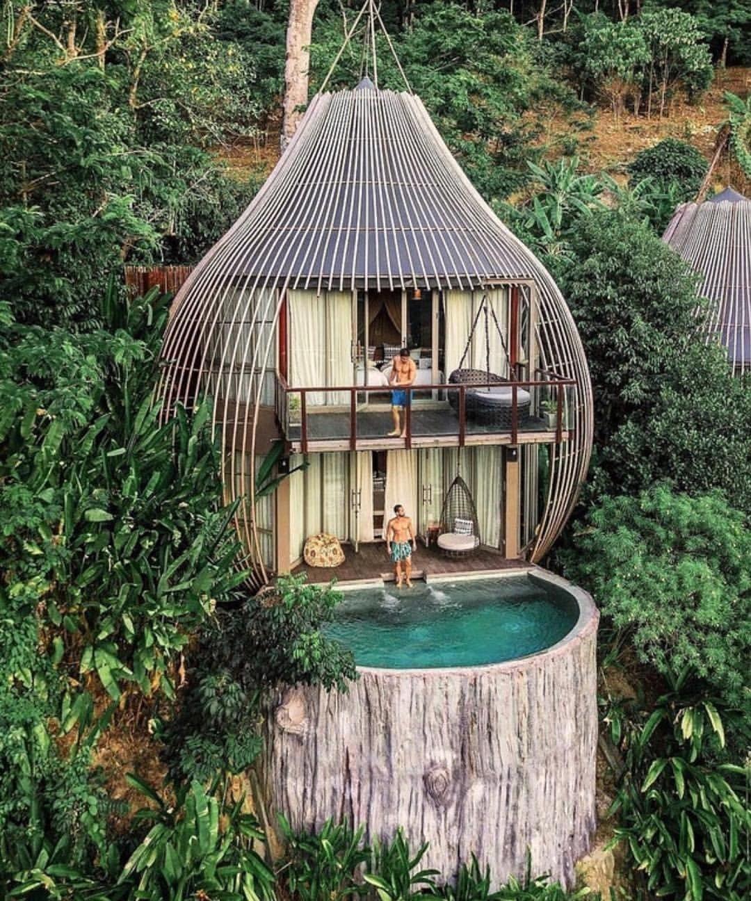 "Fantastic ""Treehouse"" hotel near Phuket, Thailand."