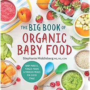 The big book of organic baby food baby pures finger foods and the big book of organic baby food baby pures finger foods and toddler forumfinder Gallery