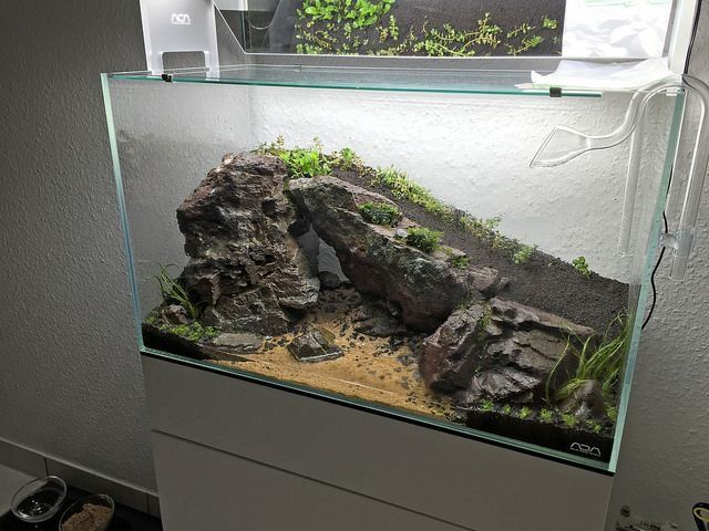 Gorgeous idea l fish and aquascaping aquarium aquarium deko aquarien - Nano aquarium deko ...