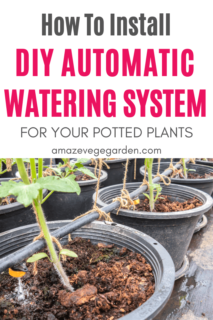 DIY Automatic Plant Watering System for Next-to-Nothing ...