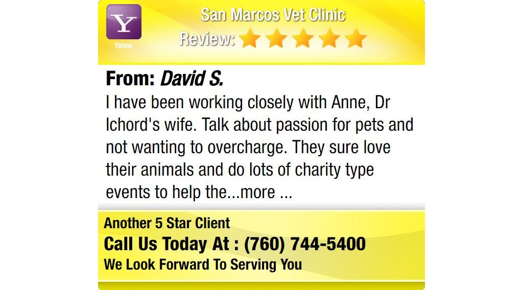 I Have Been Working Closely With Anne Dr Ichord S Wife Talk About Passion For Pets And Family Dentistry Sedation Dentistry Reviews