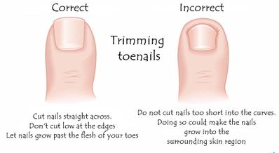 Proper Way To Cut Your Toenails Pedicure Beauty Tips