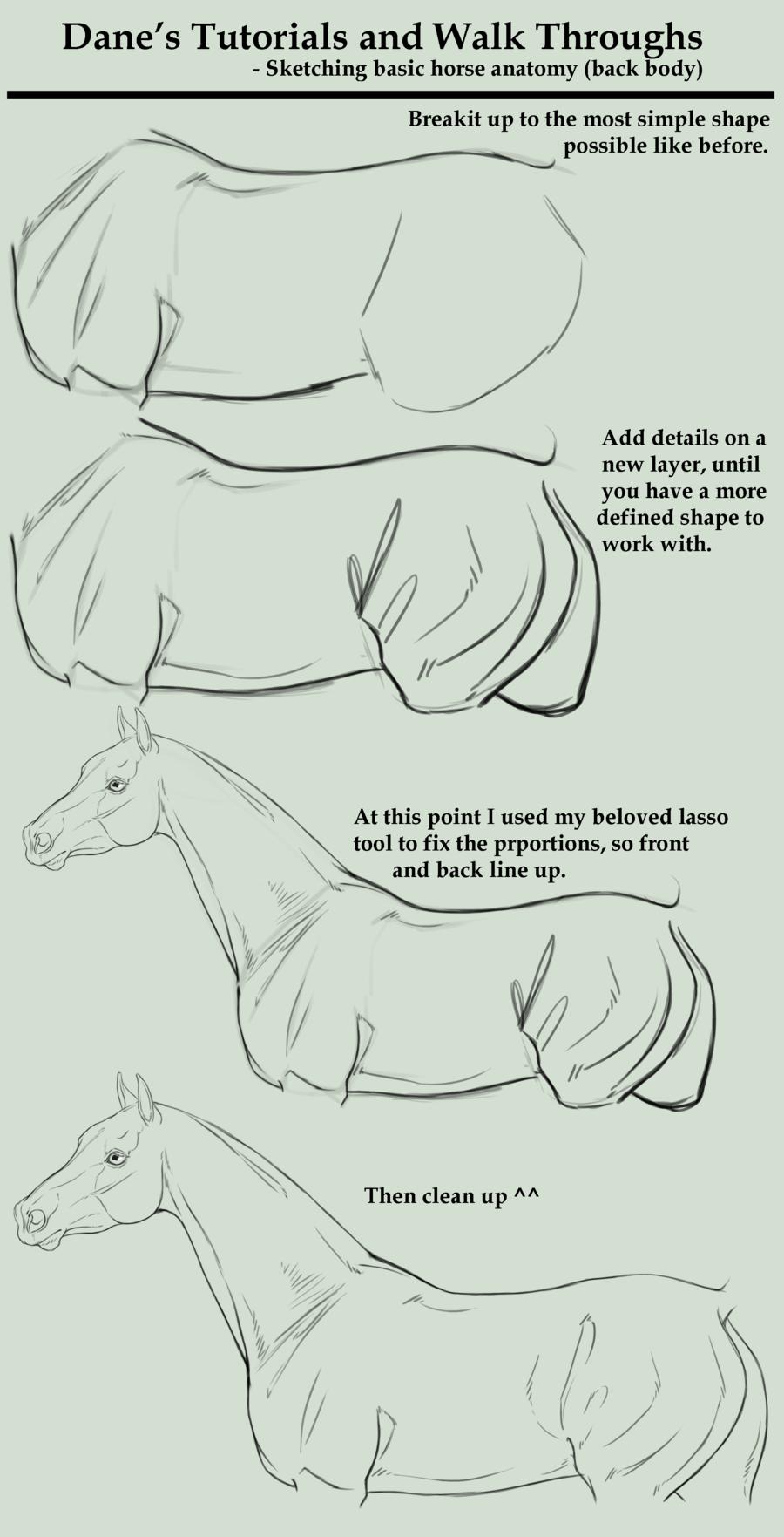 Full Body Horse Drawing : horse, drawing, Tutorial/Walk, Through, Sketching, Horse, Drawings,, Sketch,, Drawing, Tutorial