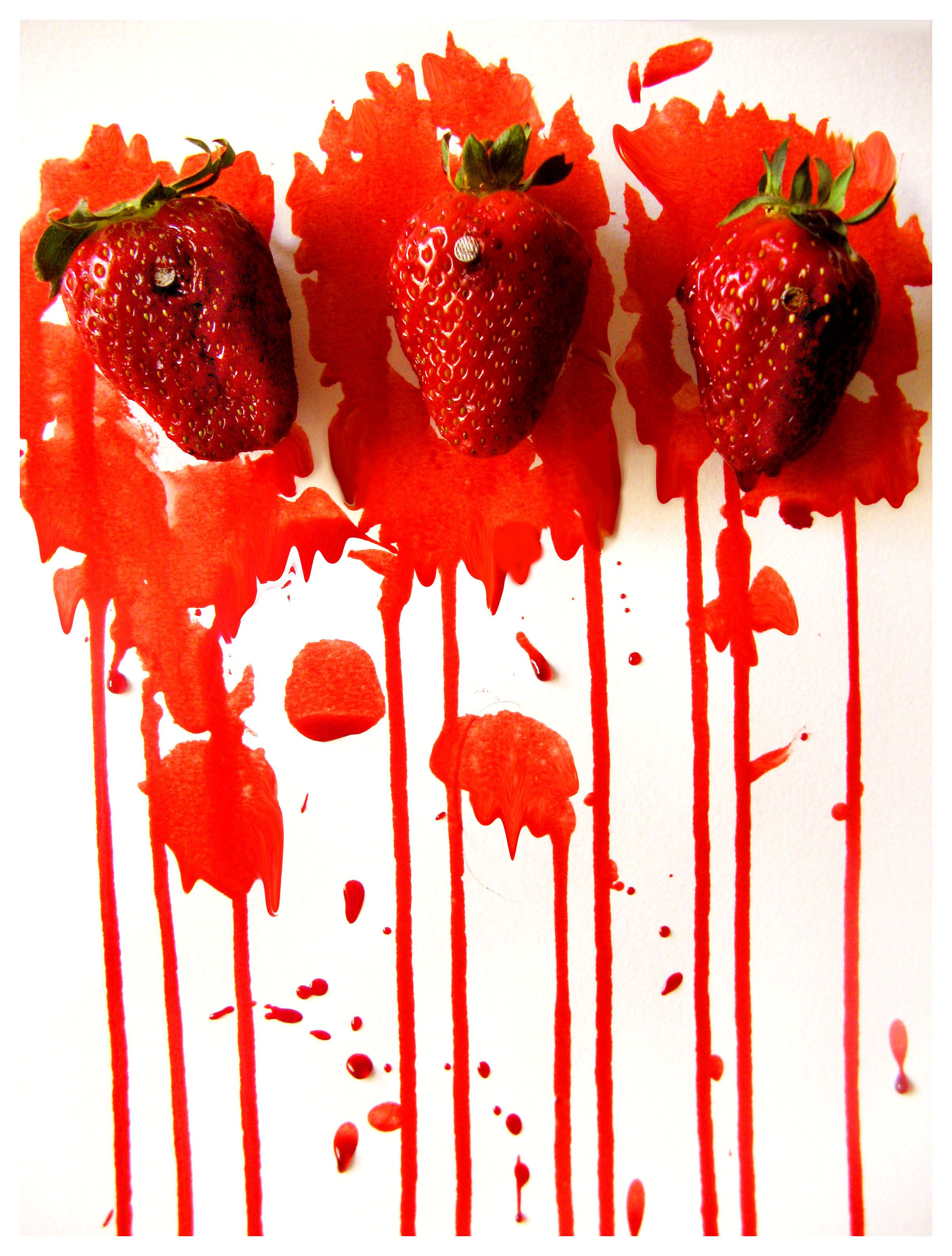 Strawberry fields forever fierce red pinterest strawberry strawberry fields forever fandeluxe Choice Image