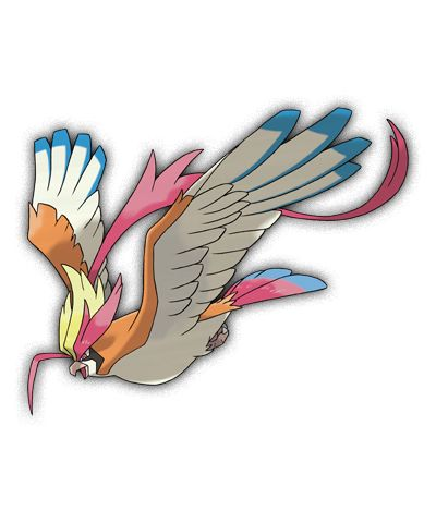 Mega Pidgeot Type Normalflying Ability No Guard Mega Stone