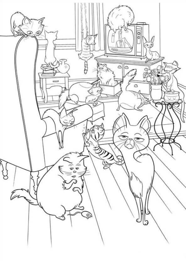 The Secret Life Of Pets Coloring Page … | Coloring pages ...