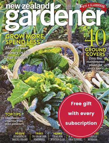 NZ Gardener, The Countryu0027s Top Selling Gardening Magazine, Features New  Zealandu0027s Most Beautiful Gardens