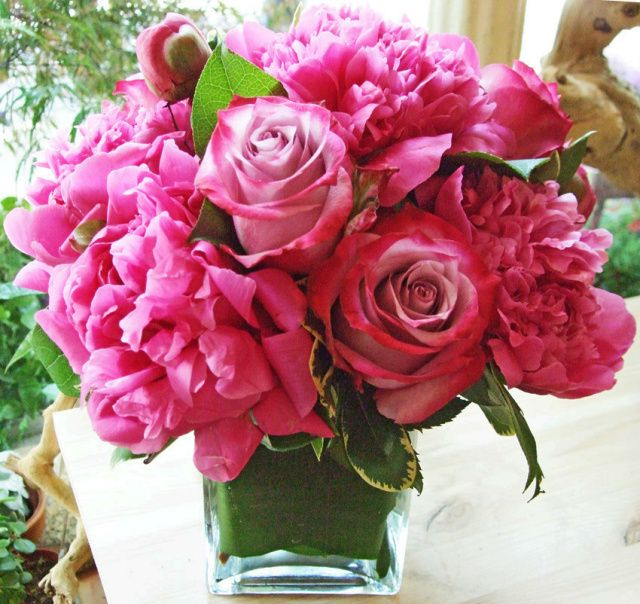 Passion for Peonies arrangement | A Gorgeous Victorian flower arrangement of deep pink peonies and deep purple roses | Order at: http://www.floralheights.com/catalog/item/7494710/9839492.htm