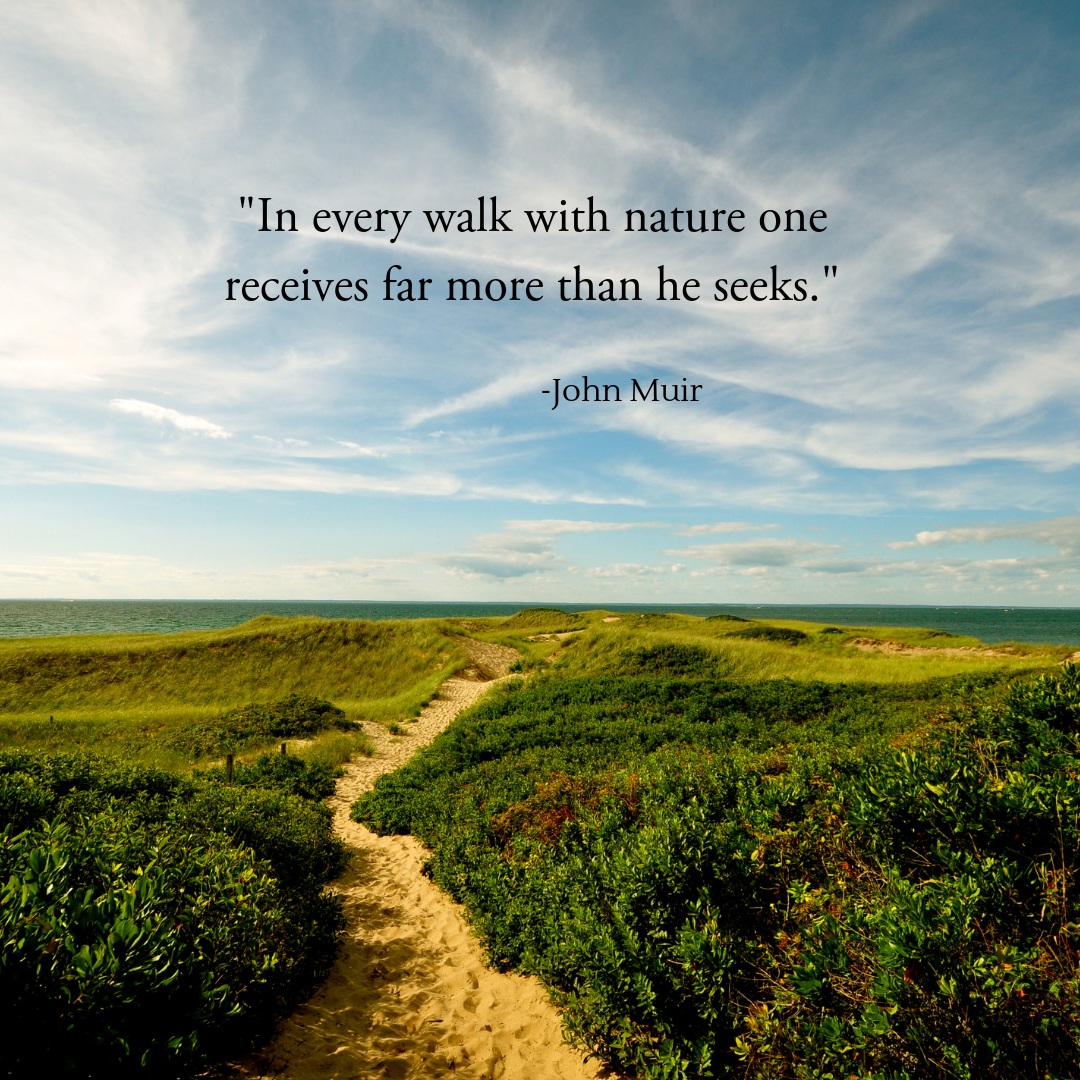 Herbal Wisdom   Quotes from nature #growth #gratitude # ...