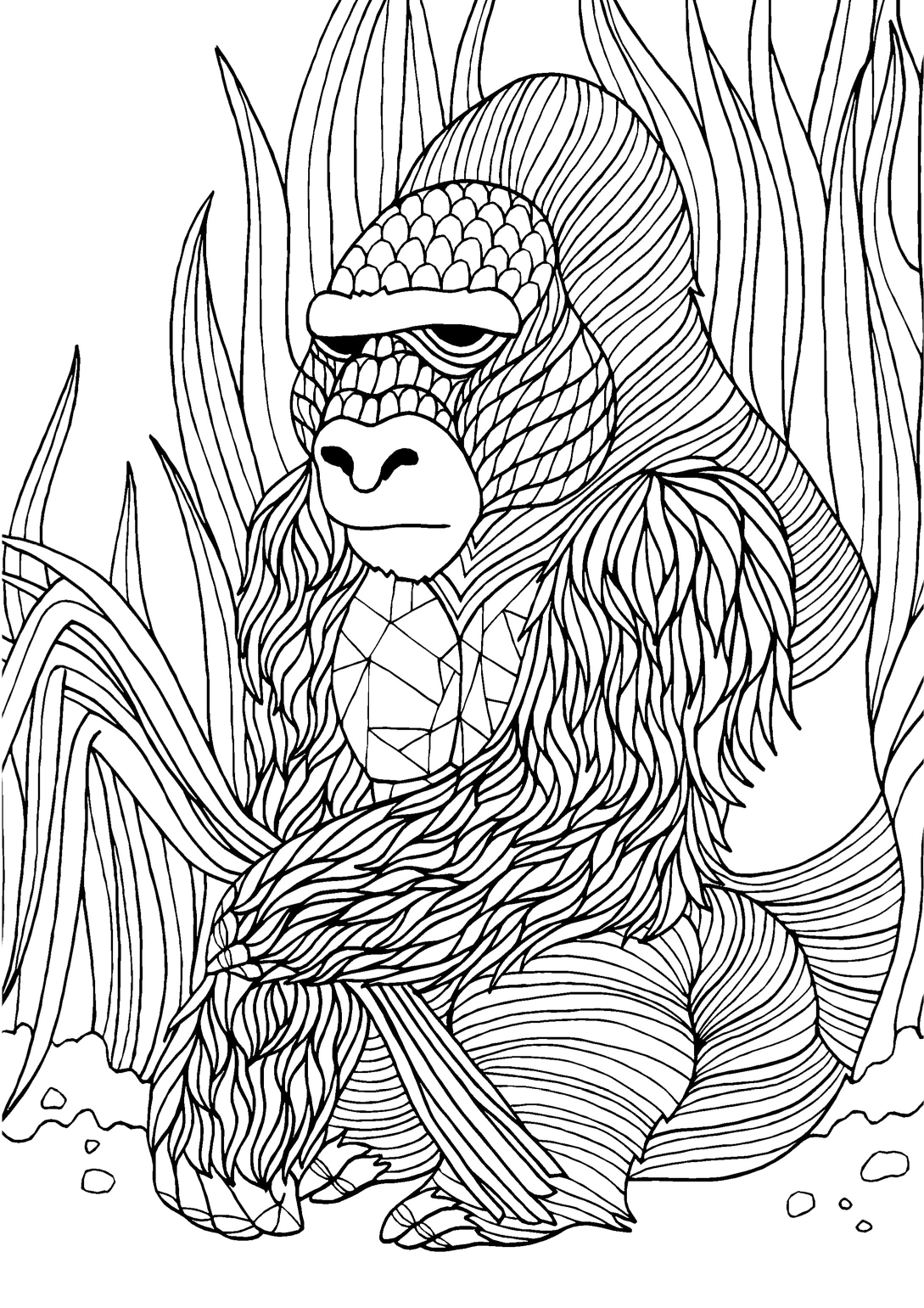 Gorilla adult colouring page : Colouring In Sheets - Art & Craft ...