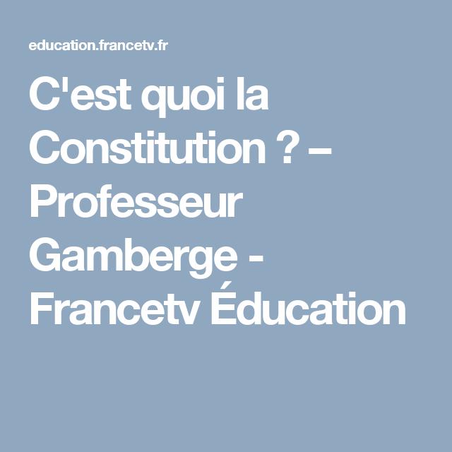 c u0026 39 est quoi la constitution    u2013 professeur gamberge