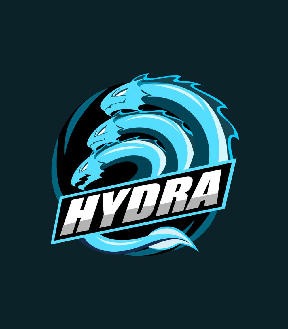 Shammyriya I Will Design Twitch Overlay And Stream Pack Esports Logo For 5 On Fiverr Com Esports Logo Sports Logo Design Logo Design Art