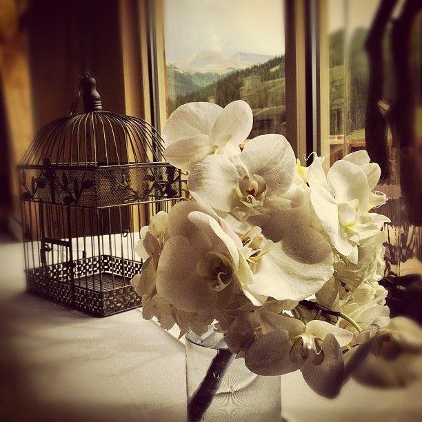 All-white #bridesmaid #bouquet for a #wedding at #CopperMountain #Colorado in the #RockyMountains for a #mountain #bride!