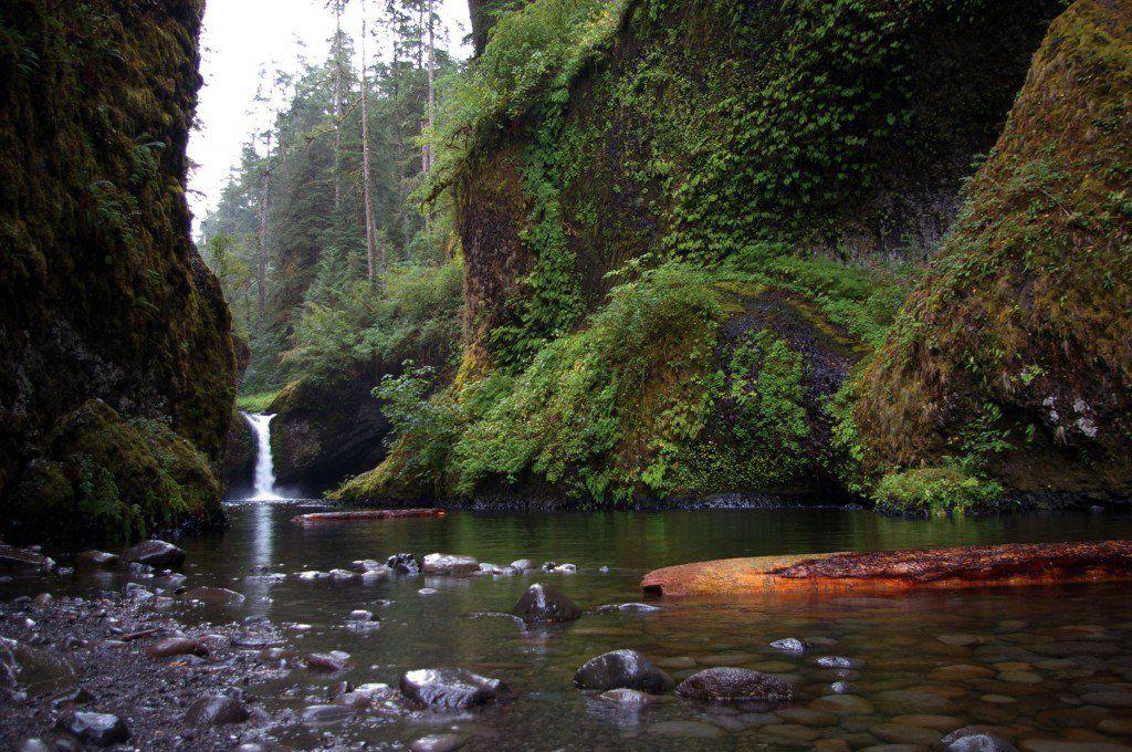 Bridge of the gods and the eagle creek pct alternate