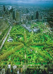 Aerial view of Melbourne's Fitzroy Gardens