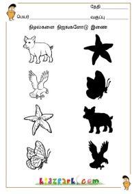 Tamil Shadow Fun Worksheets,Kids Worksheets,Teachers