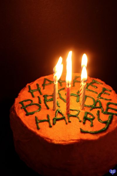 harry potters birthday cake via diamonds for dessert after the
