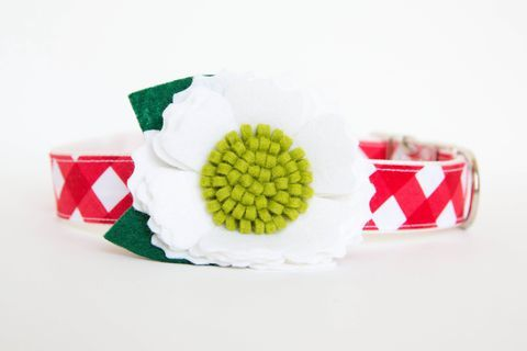 Christmas,Flower,Dog,Collar,-,White,Blossom,on,Red,Gingham,flower dog collar, dog collar flower, flower for dog collar, felt flower, wedding dog collar, fancy dog collar, christmas dog collar, holiday dog collar, plaid dog collar, gingham dog collar, red