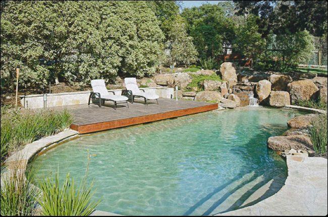Pin By Elizabeth Fischer On Design This House Landscaping Around Pool Pool Landscaping Landscaping Around House