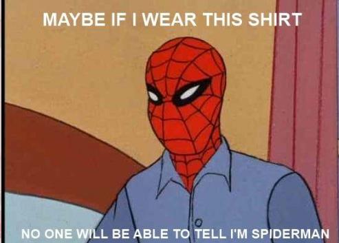 Spinne Meme