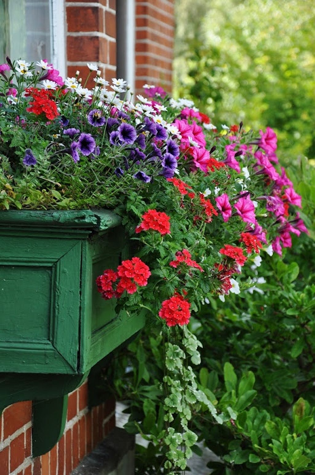 Window box ideas without flowers  awesome  awesome flowering window boxes ideas gardenmagz