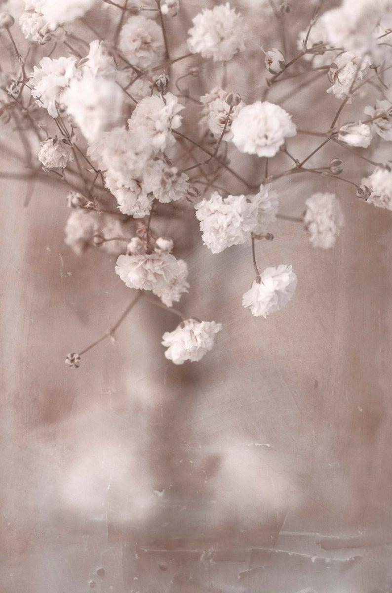 Sepia Toned Baby S Breath Flower Art Print Flower Etsy In 2020 Flower Prints Art Flower Art Floral Prints Art