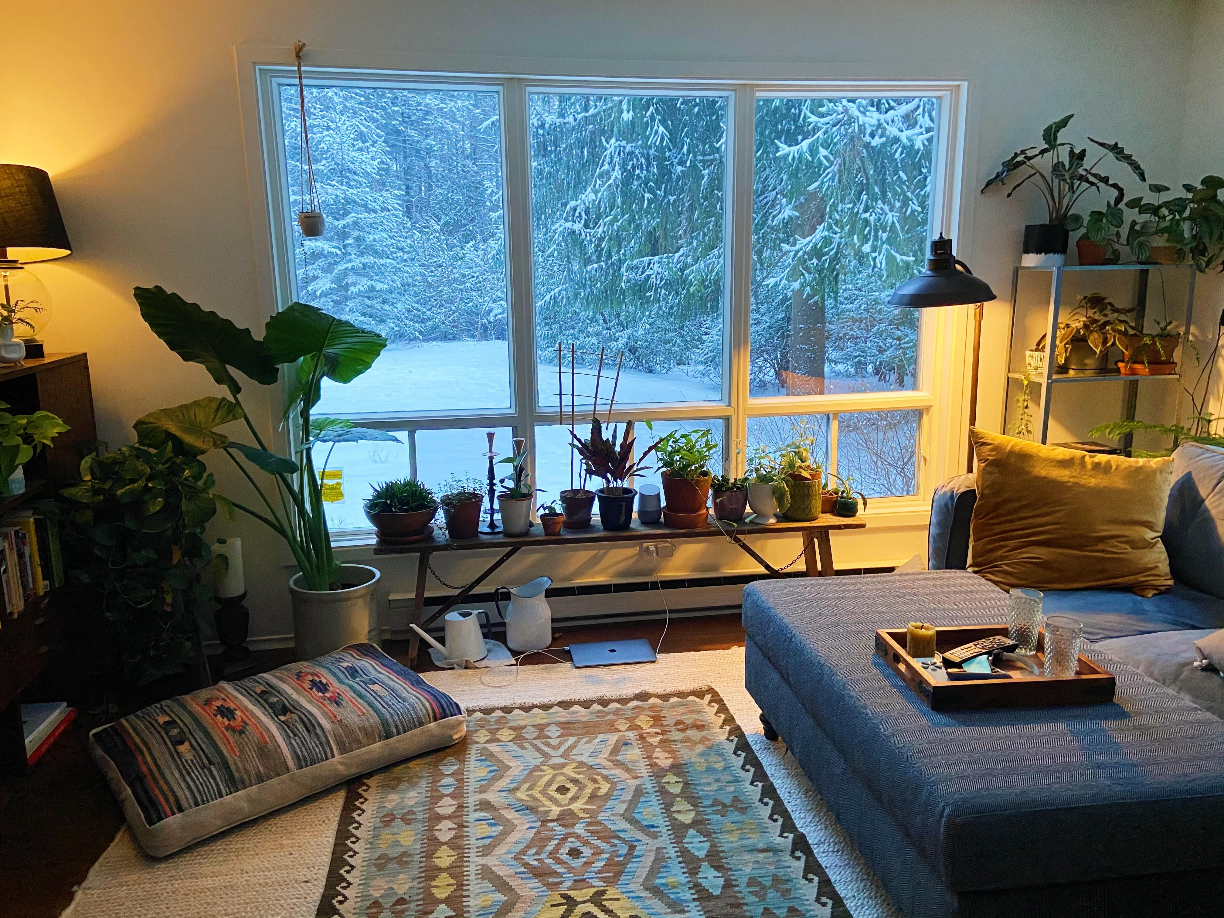 Pretty Cozy View From My Living Room This Morning Imo Daily Home Decor And Interior Design Inspiration Archi Apartment Interior Indoor Design Home Decor View home decor for small living room