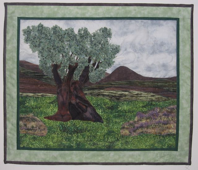 """Ancient Olive,"" a scene from Palestine by Sandra Sarner"