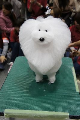 An Entry From Ohgravy With Images Dog Grooming Cute Animals Dogs